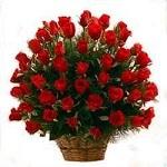 100 Roses arranged