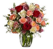 Bright colour roses